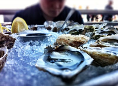 Where to get oysters on the cheap