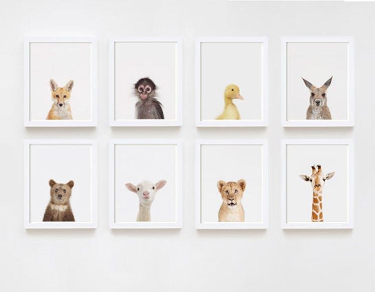 Animal Print Shop 11   Sharon Montrose Est Magazine
