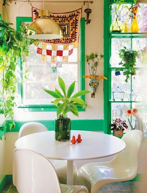 Plants 479x629