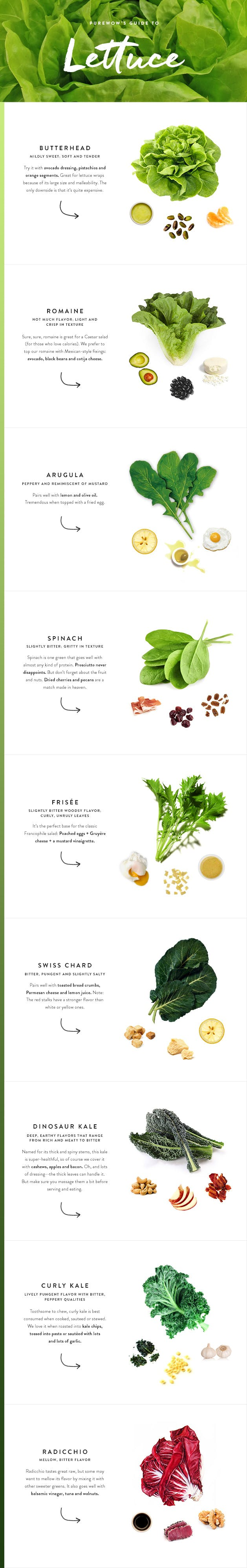 PureWow Guide To Lettuce Infographic