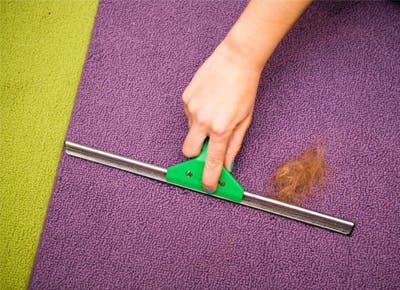 Secret Housecleaning Tricks Slideshow