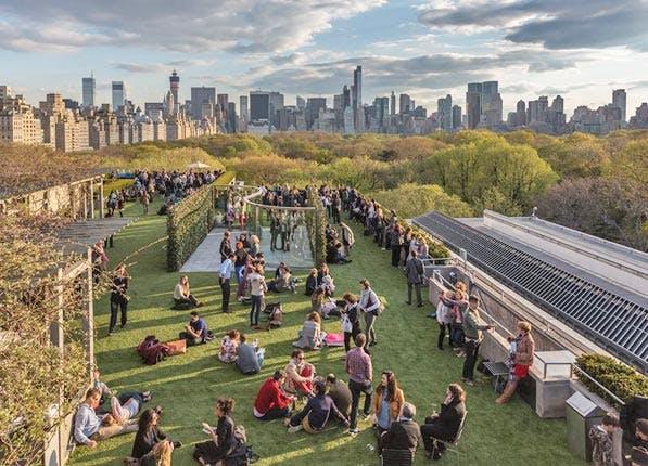 nyc rooftops met garden
