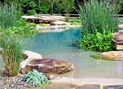 Natural Swimming Pools Dont Need No Chemicals