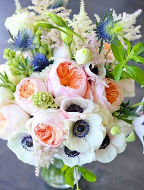 flowers slide2 479x629