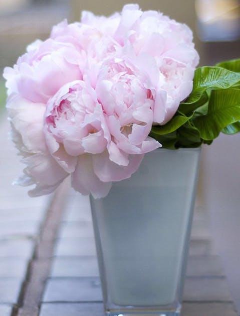 nyc florists 5