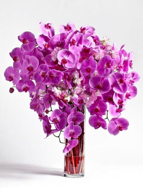 nyc florists 7