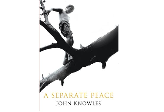 reread books separate peace