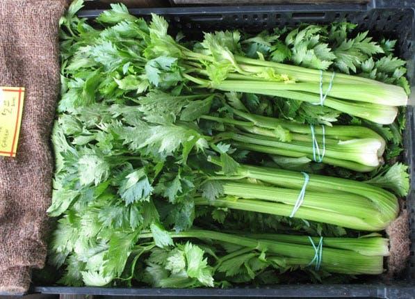 food myths celery
