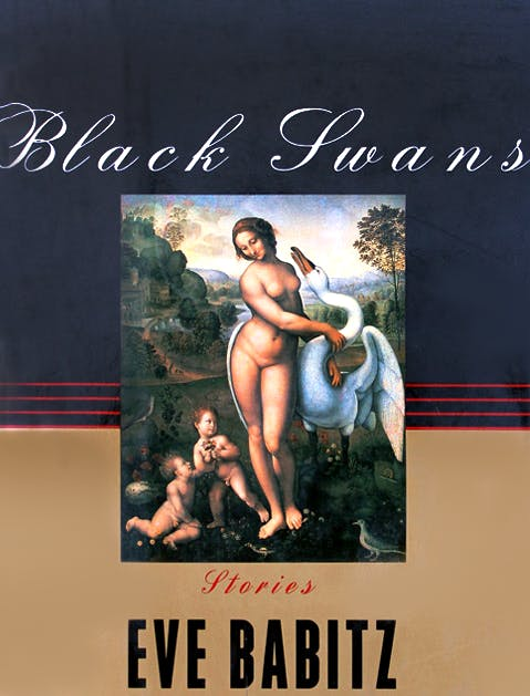 Black Swans 479x629 V2