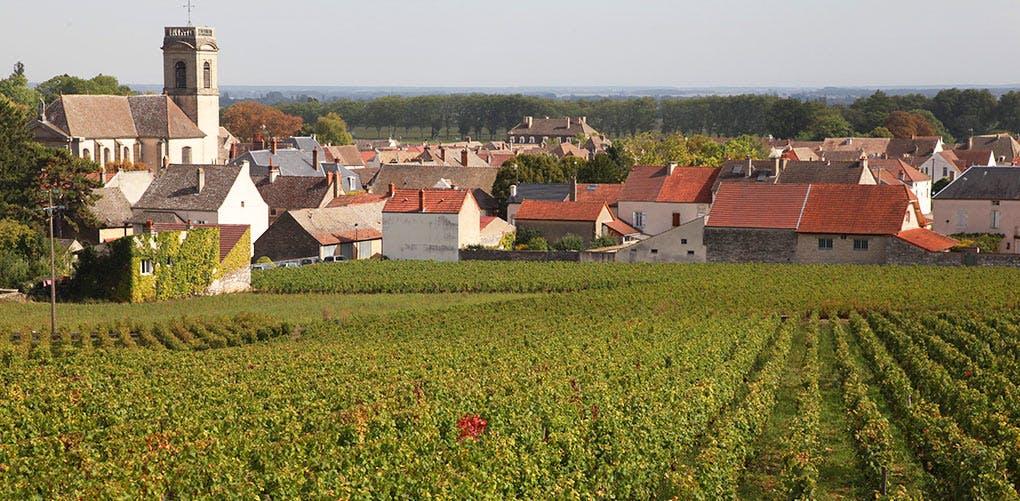 BurgundyBucketlist
