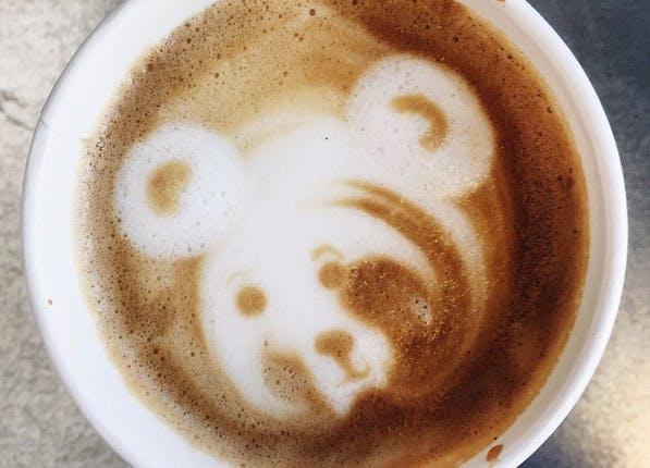 annoying insta latte