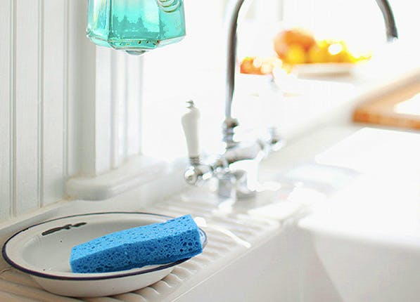 dishwashersponge1