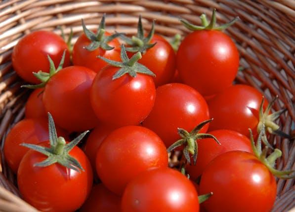 ripe fruit tomato