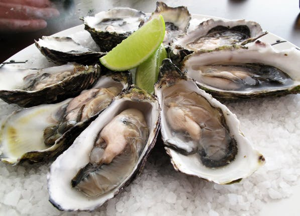 happy food oysters