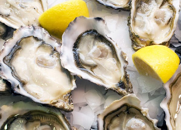 period food oysters