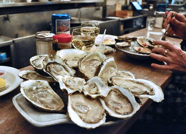 Oysters 597x430