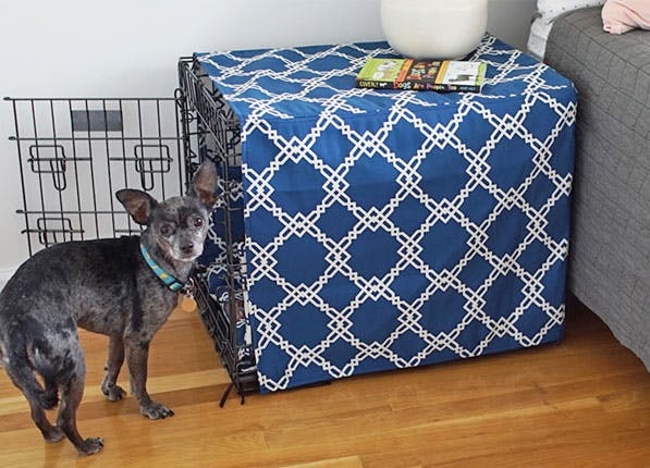 Pets Crate 597x430