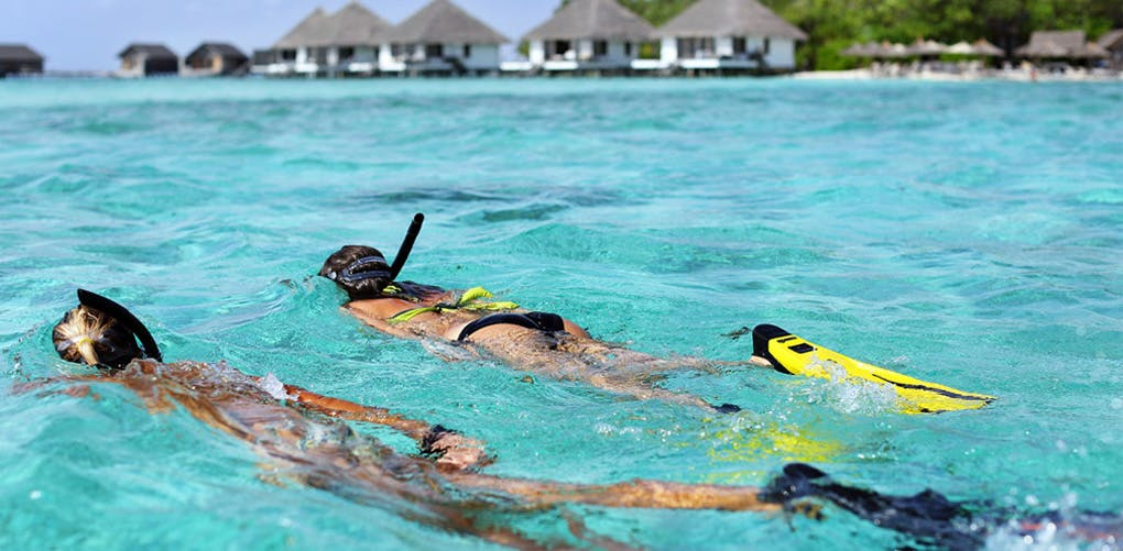 What to Do   Maldives