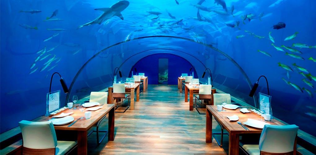 Where to Eat   Maldives