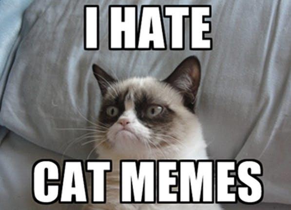 fb memes