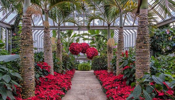 botanicgarden1