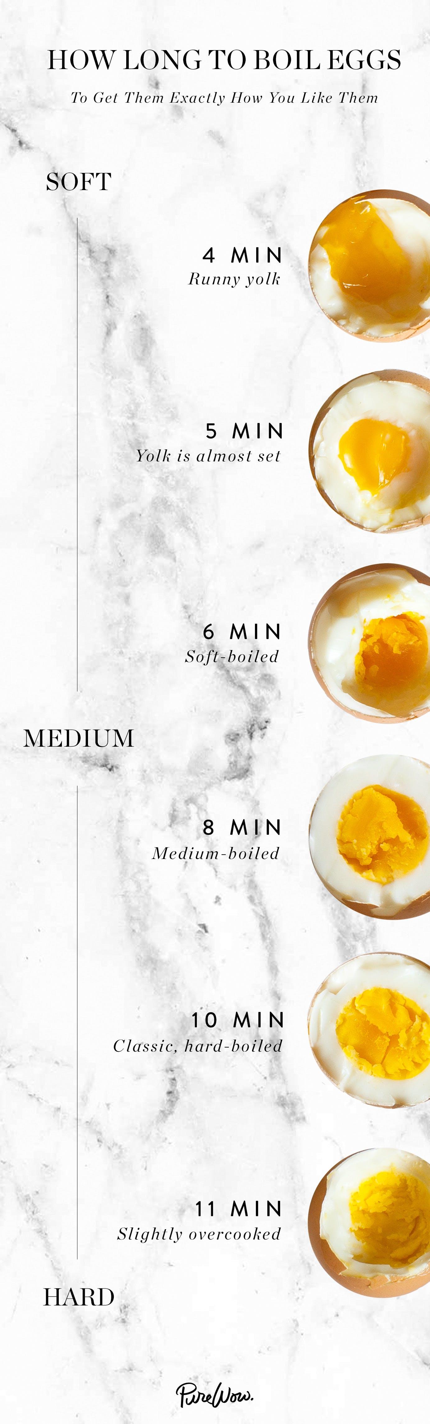 egg infographicfinal