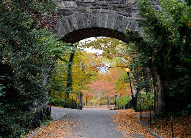 NY Parks List7