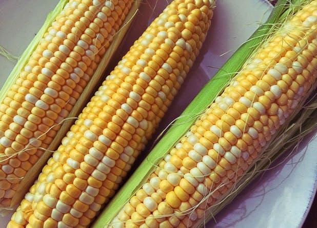 best veg corn