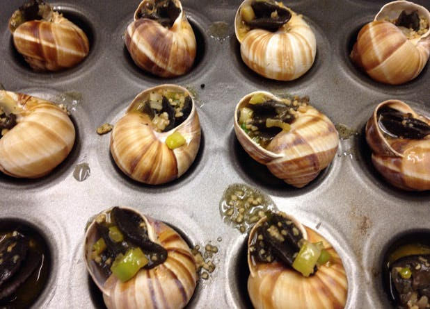 food escargot