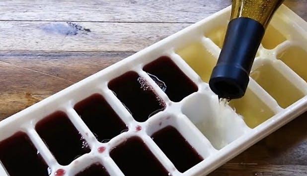 icetrayfood1