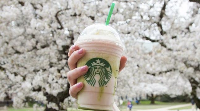 The New Cherry Blossom Starbucks Frappuccino Is Everything You Love About Spring