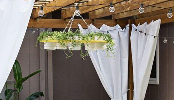 vertical garden crop2