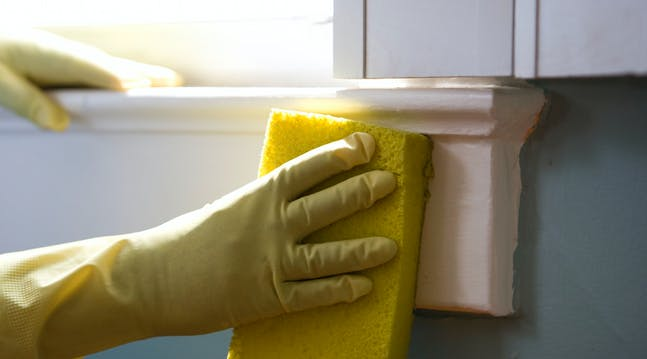 How to Extend the Life of Your Kitchen Sponges