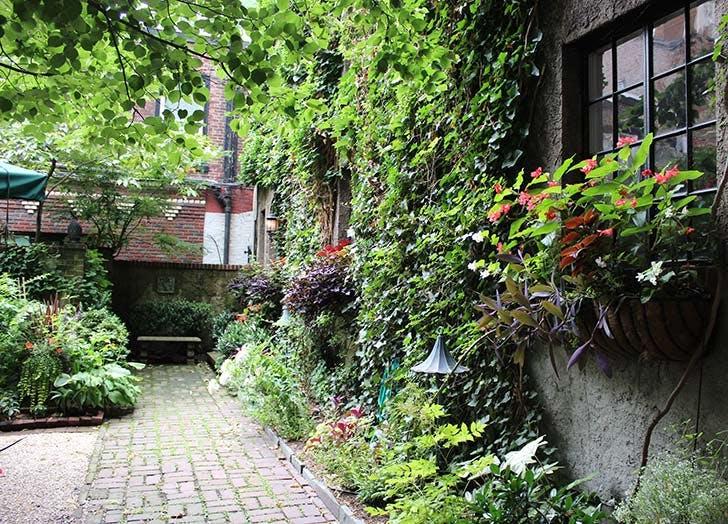 NY Plants List5