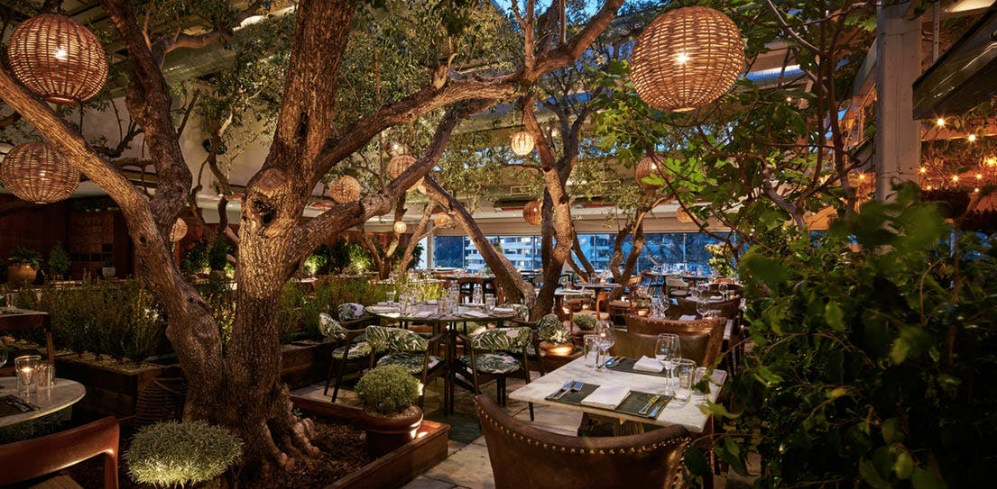 11 Of The Most Beautiful Restaurants In America Purewow