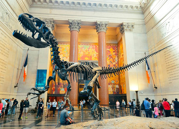 All the IDNYC Card Perks: From Museums to Broadway - PureWow
