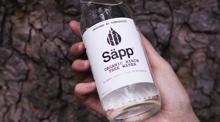 Birch Water Is the New Coconut Water (and Its Delicious)