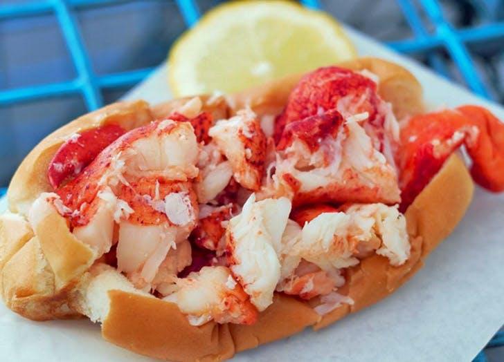 Lobster 728x524