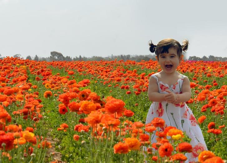 flowername8