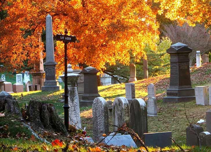 NY halloween list4