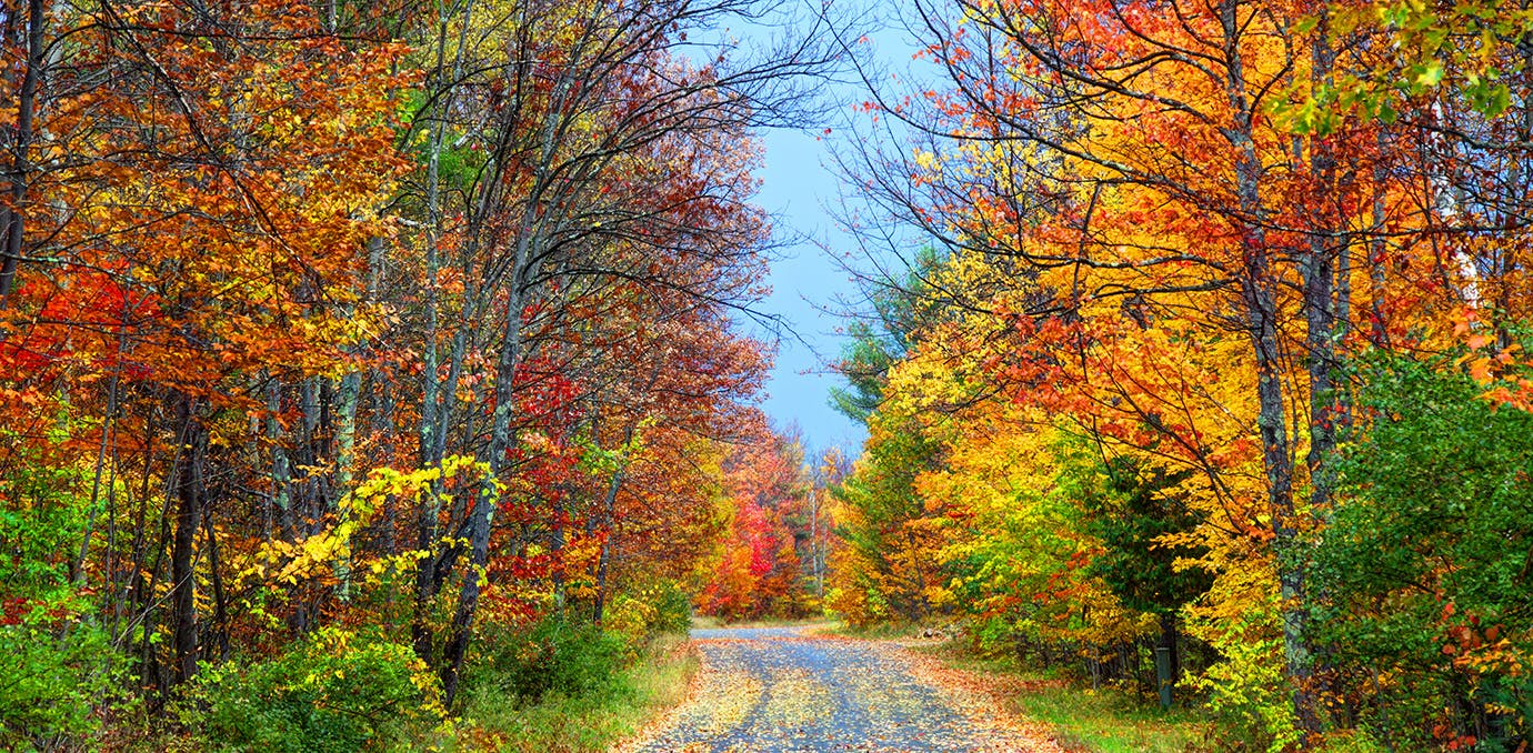 Autumn Colors New England In Fall Hot Girls Wallpaper