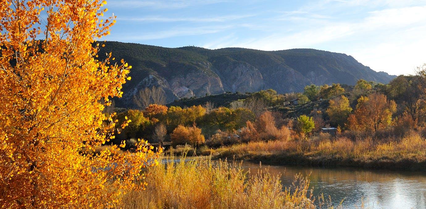 WEB FallColors Taos
