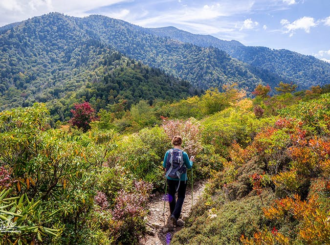 Amazing 10 Most Gorgeous Fall Hikes Around the Country