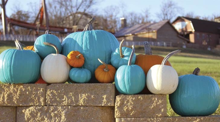Why Teal Pumpkins Are Popping Up in Your Neighborhood This Year