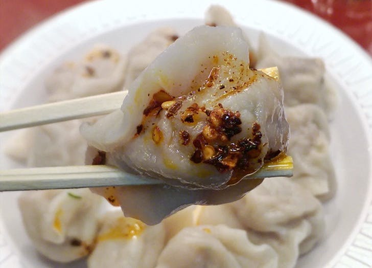 tianjin dumplings NY 728