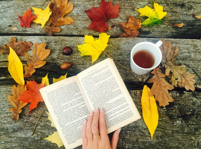 11 Books You Can (and Should) Read Over Thanksgiving Weekend