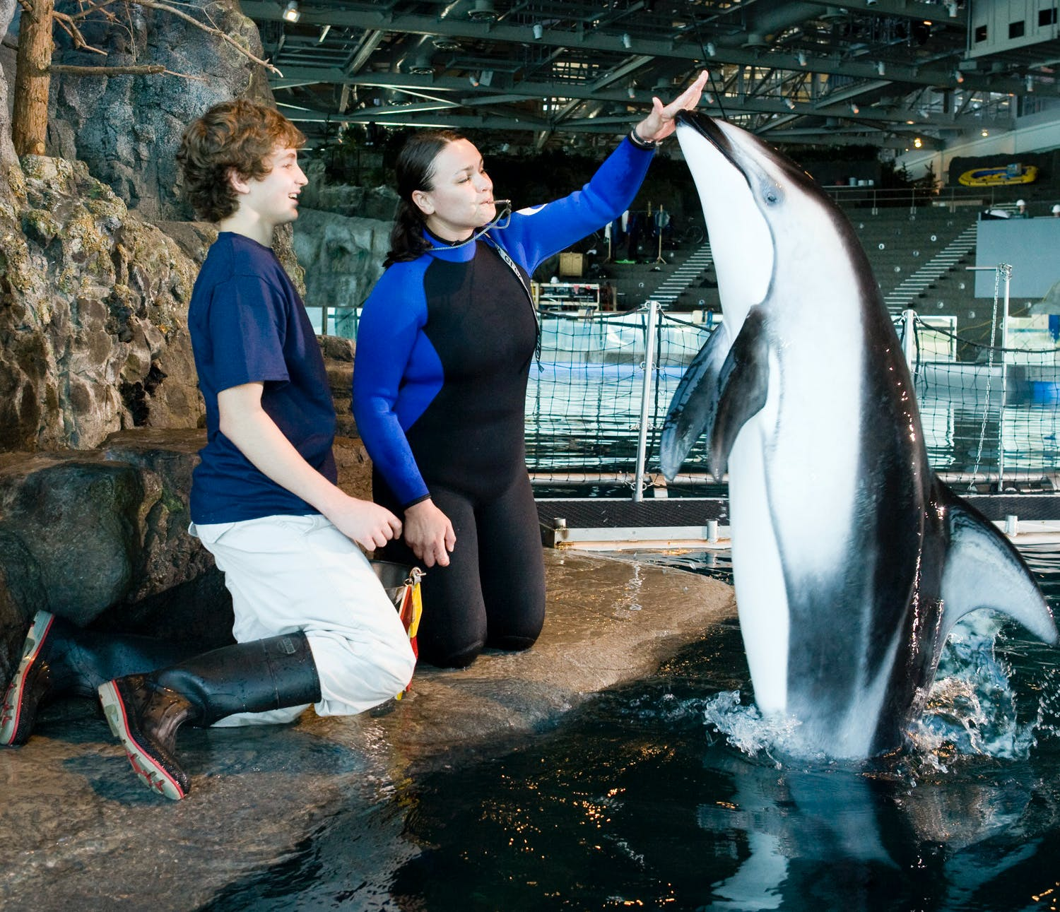 dolphin trainer day shedd aquarium chicago experience gifts