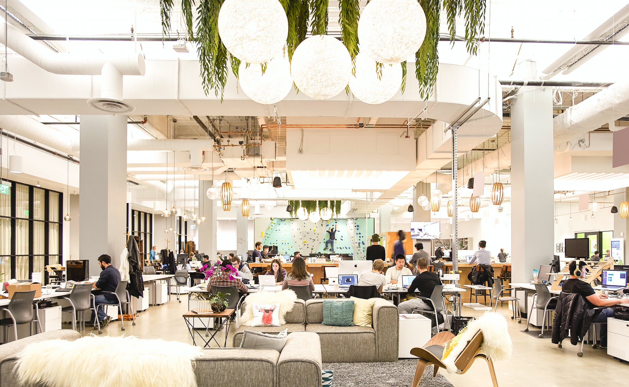 The 8 best co working spaces in san francisco purewow for Design companies in san francisco