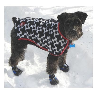 coat 2 chicago winter dog gear