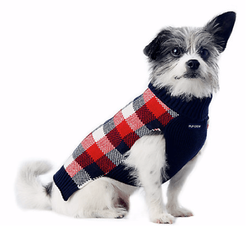 sweater chicago winter dog gear